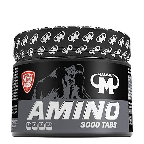 Mammut Amino 3000...